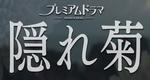 隠れ菊-ブログ